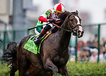 LOUISVILLE, KENTUCKY - MAY 04: Bricks and Mortar with Iran Ortiz jr wins the Old Forester Turf Cup at Churchill Downs in Louisville, Kentucky on May 04, 2019. Evers/Eclipse Sportswire/CSM