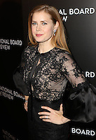 www.acepixs.com<br /> <br /> January 4 2017, New York City<br /> <br /> Actress Amy Adams arriving at the 2016 National Board of Review Gala at Cipriani 42nd Street on January 4, 2017 in New York City. <br /> <br /> By Line: Nancy Rivera/ACE Pictures<br /> <br /> <br /> ACE Pictures Inc<br /> Tel: 6467670430<br /> Email: info@acepixs.com<br /> www.acepixs.com