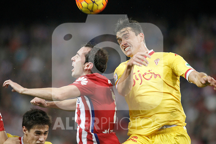 Atletico de Madrid's Diego Godin (l) and Sporting de Gijon's Bernardo Espinosa during La Liga match. November 8,2015. (ALTERPHOTOS/Acero)