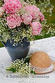 Carl, FLOWERS, photos, SWLA12035,#f# Blumen, Natur, flores, naturaleza