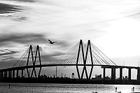 Another capture of the The Fred Hartman in black and white bridge as a pelican flew across the bridge. The bridge span 2.8 miles across the ship channel from La Porte to Baytown Texas. This is cable stay bridge and it is the largest in Texas out of only four other similar stay bridges. The other well known cable stay bridge is in Dallas, the Margaret Hunt HIll bridge.  The Fred Hartman bridge is actually the  77th largest in the world. The bridge was built to replace the Baytown tunnel that went underneath the water so they could dig it out for bigger ships to pass. I remember going through the tunnel when I was a kid always worried that it would collapse as we went through. Now today you have this great looking cable stay bridge.  This is the energy sector which is near the Port of Houston with refineries in every direction you look.