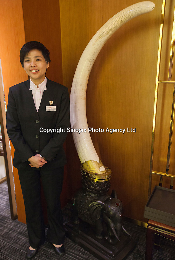A salesperson stands next to one tusk from a pair of ivory tusks worth HK$8.2 million (GBP648,000.00) on sale in 'Chinese Arts &amp; Crafts', Hong Kong, China, 29 November 2013. <br /> <br /> Photo by Alex Hofford / Sinopix