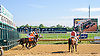 My Cape Cod winning at Delaware Park on 9/22/16