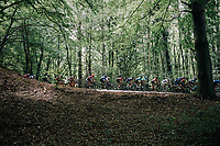 peloton through the forest<br /> <br /> 97th Brussels Cycling Classic (1.HC)<br /> 1 Day Race: Brussels &gt; Brussels (201km)