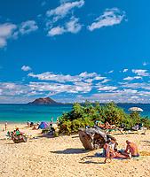 Spanien, Kanarische Inseln, Fuerteventura, Corralejo: Duenen und Strand   Spain, Canary Island, Fuerteventura, Corralejo: dunes and beach