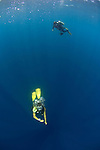 Divers in shallow clear water, Layang Layang atoll, Sabah, Malaysia, South China Sea, Pacific Ocean