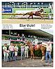 winning at Delaware Park on 7/3/14