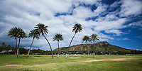 Treeline at Kapi'olani Park, with Diamond Head in the background and clouds streaking overhead on O'ahu.