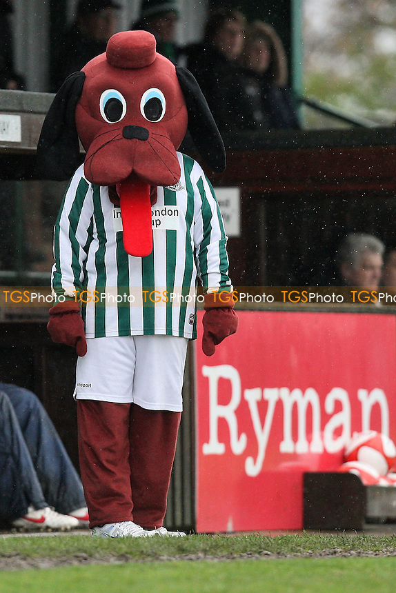 The Great Wakering mascot looks on from the touchline - Great Wakering Rovers vs Romford - Ryman League Division One North Football at Burroughs Park - 28/04/12 - MANDATORY CREDIT: Gavin Ellis/TGSPHOTO - Self billing applies where appropriate - 0845 094 6026 - contact@tgsphoto.co.uk - NO UNPAID USE.
