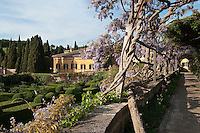 View from the wisteria clad pergola to the lemon garden at La Foce
