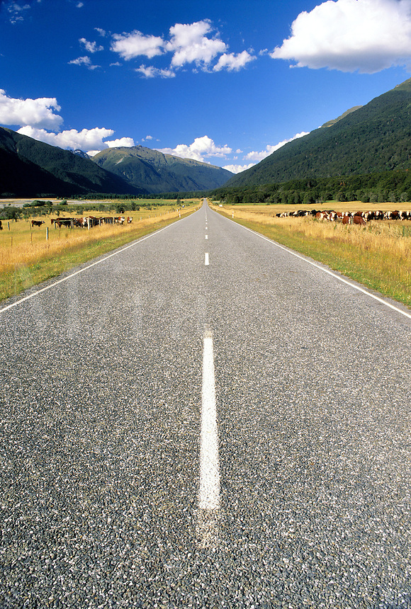 New Zealand, South Island. Road going off to infinit