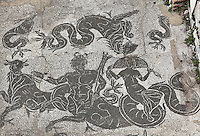 Triton and Nereid, surrounded by a sea-cow, dolphins, and hippocamps, mosaics floor of the caldarium of the Terme del bagnino Buticosus (Baths of the Baths-Superintendent Buticosus), early 2nd century AD, Ostia Antica, Italy. Picture by Manuel Cohen