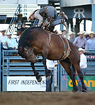 Heith Allan DeMoss competes in the saddle bronc event at the Reno Rodeo in Reno, Nev., on Thursday, June 27, 2013.<br /> Photo by Cathleen Allison