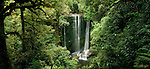 Korokoro Waterfall. Te Urewera National Park. Hawkes Bay Region. New Zealand.