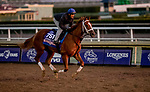 October 30, 2019: Breeders' Cup Juvenile Fillies entrant British Idiom, trained by Brad Cox, exercises in preparation for the Breeders' Cup World Championships at Santa Anita Park in Arcadia, California on October 30, 2019. Michael McInally/Eclipse Sportswire/Breeders' Cup/CSM
