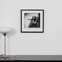 "Tress: ""Shadow Prisoner"", Digital Print, Image Dims. 12"" x 12"", Framed Dims. 17.25"" x 17.25"" , film art, cleared art rental, cleared artwork, cleared artwork for film and tv"