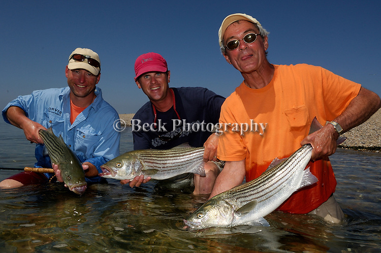 TOM KEER, TODD MURPHY AND KENNY ABRAMES WITH THEIR STRIPED BASS