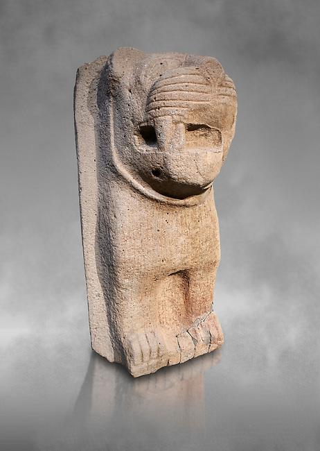 Hittite monumental relief sculpture of a lion. Adana Archaeology Museum, Turkey. Against a grey art background