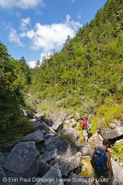 Ice Gulch - Hikers make their way along the Ice Gulch Path in Randolph, New Hampshire during the summer months. Ice can be found in this ravine year round.