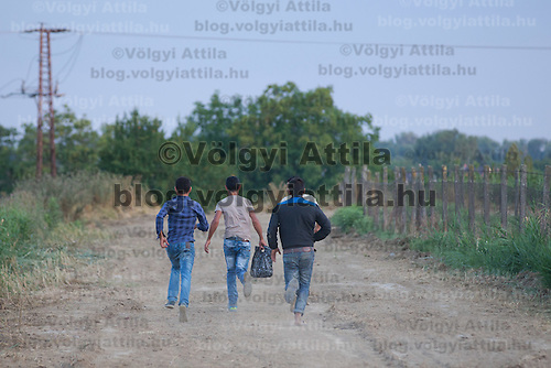 Illegal migrants run on a dirt road on the outskirt of Szeged (about 173 km South-East of capital city Budapest), Hungary on July 16, 2015. ATTILA VOLGYI