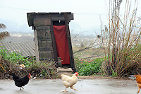 A dilapidated toilet in the rural area of Guangzhou, China..
