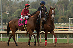 ARCADIA, CA  JANUARY 06: #8 Itsinthepost, ridden by Tyler Baze, in the post parade of the San Gabriel Stakes (Grade ll) on January 6, 2018, at Santa Anita Park in Arcadia, CA.(Photo by Casey Phillips/ Eclipse Sportswire/ Getty Images)