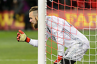 Toronto, ON, Canada - Saturday Dec. 10, 2016: Stefan Frei during the MLS Cup finals at BMO Field. The Seattle Sounders FC defeated Toronto FC on penalty kicks after playing a scoreless game.