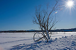 Idaho,Coeur d' Alene. Snow scene of irrigation lines on the Rathdrum Prairie in winter.