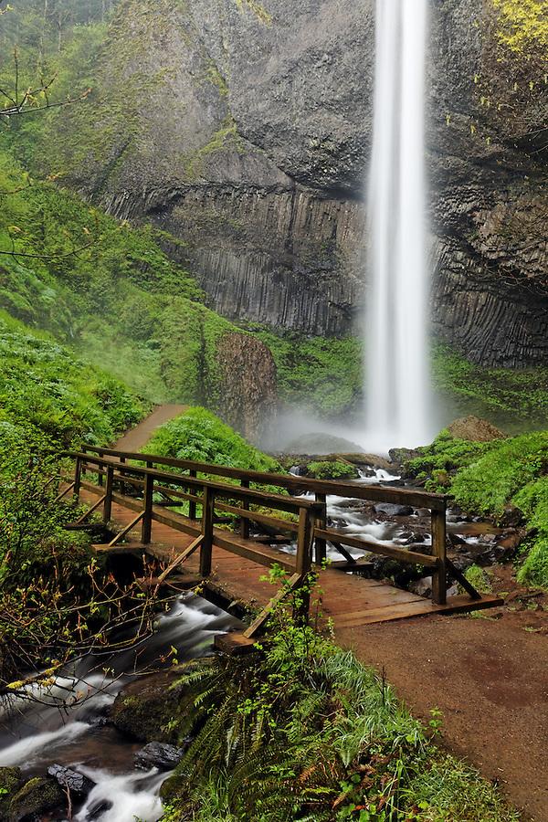 Latourell Falls and footbridge, Columbia River Gorge National Scenic Area, Oregon, USA