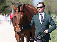LEXINGTON, KY - April 26, 2017. #53 Luckaun Quality and Tim Bourke from Ireland at the Rolex Three Day Event First Horse Inspection at the Kentucky Horse Park.  Lexington, Kentucky. (Photo by Candice Chavez/Eclipse Sportswire/Getty Images)