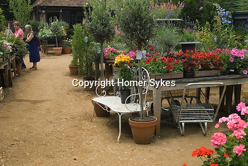 Petersham Nurseries Richmond Surrey  restuarant cafe.  UK.