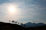 Tree Silhouettes, Elgol, Isle of Skye, Scotland
