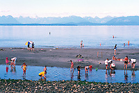 "People beachcombing on the Beach and wading in the Pacific Ocean at Qualicum Beach, in the ""Oceanside Region"" of Vancouver Island, British Columbia, Canada"
