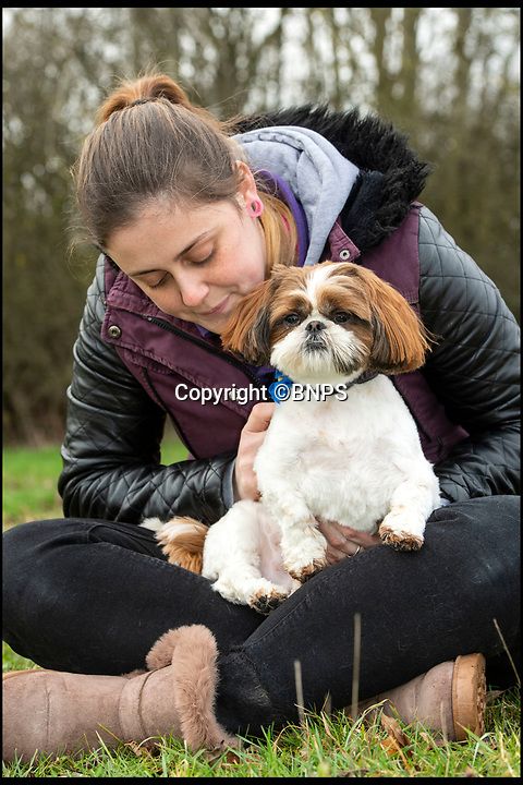 BNPS.co.uk (01202 558833)<br /> Pic: PhilYeomans/BNPS<br /> <br /> Bertie with rescue centre worker Melissa Bull.<br /> <br /> Meet Bertie the bow-legged Shih-Tzu puppy...<br /> <br /> A rescue centre has launched a crowd funding page to raise the £4,000 needed to help him run around again.<br /> <br /> One year old Bertie has been abandoned by his owners who couldn't afford the cost of his life changing operations, but Ardley rescue centre boss Annabelle Weir from Bicester in Oxfordshire is determined to give bow-legged Bertie a second chance.