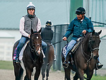 January 23, 2020: Omaha Beach heads to the track as horses prepare for the Pegasus World Cup Invitational at Gulfstream Park Race Track in Hallandale Beach, Florida. Scott Serio/Eclipse Sportswire/CSM