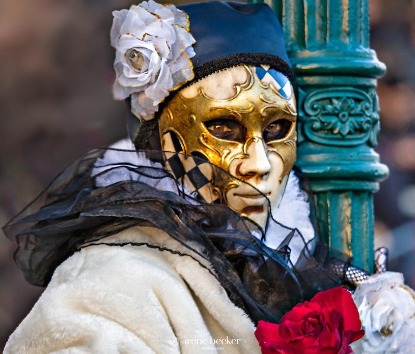 Carnival of Venice 2013