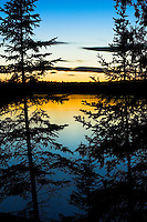 Pine trees silhouetted against setting sun at Mitchell Lake near Ely, Minnesota.