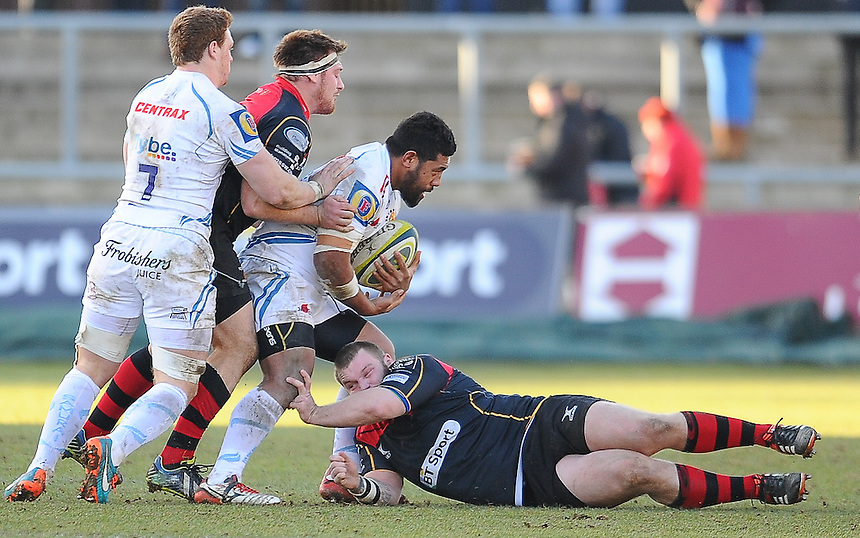 Exeter Chiefs' Brett Sturgess is tackled by Newport Gwent Dragons' Hugh Gustafson<br /> <br /> Photographer Craig Thomas/CameraSport<br /> <br /> Rugby Union - European Rugby Challenge Cup Pool 3 - Newport Gwent Dragons v Exeter Chiefs - Sunday 1st February  2015 - Rodney Parade - Newport <br /> <br /> &copy; CameraSport - 43 Linden Ave. Countesthorpe. Leicester. England. LE8 5PG - Tel: +44 (0) 116 277 4147 - admin@camerasport.com - www.camerasport.com