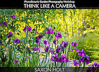 PhotoBotanic Garden Photography Workbook, Think Like A Camera eBook Cover