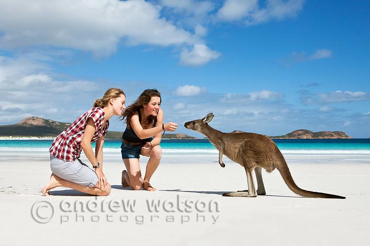 Young women and kangaroo on beach.  Lucky Bay, Cape Le Grand National Park, Esperance, Western Australia, Australia