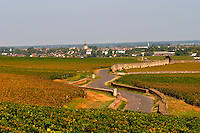 Winding road through the vineyard with Beaune village. Pommard, Cote de Beaune, d'Or, Burgundy, France
