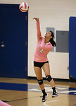 Marymount's Courtney Phung serves during a college volleyball match against Shenandoah at Marymount University in Arlington, Vir., on Tuesday, Oct. 8, 2013.<br /> Photo by Cathleen Allison