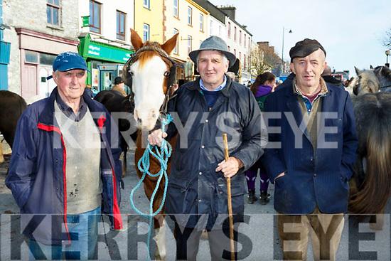 Tom Sullivan Castleisland,  Charlie Moriarty and Tom Foran Currow at the Castleisland Horse Fair on Wednesday