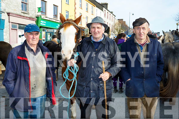 Tom Sullivan Castleisland,  Charlie Moriarty and Tom Foran Currow at the Castleisland Horse Fair on Wednesday