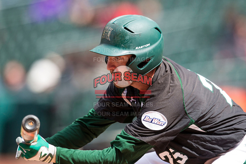 Hawaii Rainbow Warriors shortstop Jacob Sheldon-Collins (25) lays down a bunt during Houston College Classic against the Baylor Bears on March 6, 2015 at Minute Maid Park in Houston, Texas. Hawaii defeated Baylor 2-1. (Andrew Woolley/Four Seam Images)