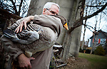 112310walkcol27p1, mjs, news - David Moga hugs Gertie, his pet goose by the pond backyard, in Cedarburg on Tuesday, November 23 2010. PHOTO BY MARK ABRAMSON/MABRAMSON@JOURNALSENTINEL.COM