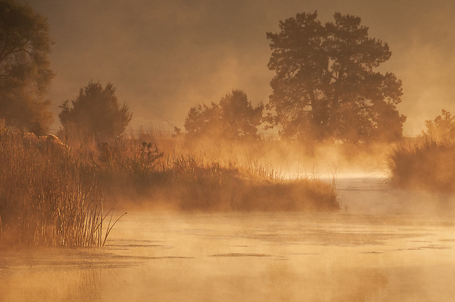 Mist rising off the Sprague River at dawn.