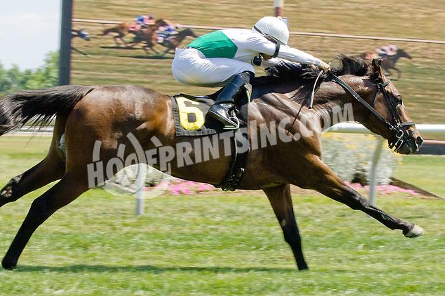 Utlety winning at Delaware Park on 6/16/12