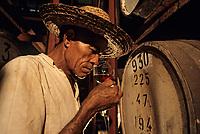 France/DOM/Martinique/Le François/Domaine de l'Acajou/Distillerie Clément: Dégustation de rhum vieux dans les chais [Non destiné à un usage publicitaire - Not intended for an advertising use]