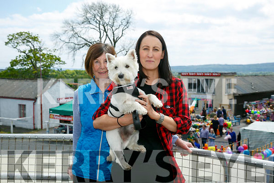 At the Kingdom County Fair in Ballybeggan on Sunday were Philomena Dalton, Bernadette Dalton with Zacko